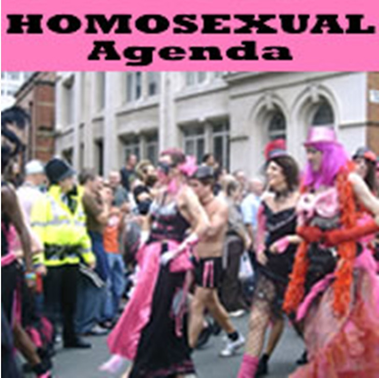 The Real Agenda Behind Gay Anti-Bullying Clubs In Your School By Peter ...
